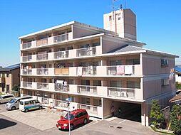 第二八幡台マンション[305号室]の外観