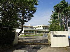 青梅第五小学校 徒歩 約4分(約270m)