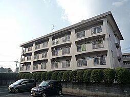 福岡県糟屋郡志免町志免中央3丁目の賃貸マンションの外観
