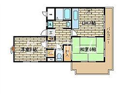 兵庫県神戸市垂水区清玄町の賃貸マンションの間取り