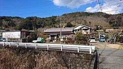 伊豆市大沢