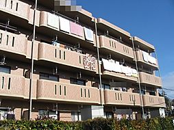 ミレニアム・パレ[1階]の外観