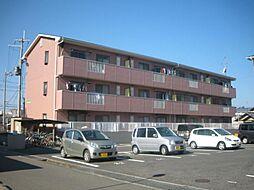 ベルネーヅェアサヒ[305号室]の外観