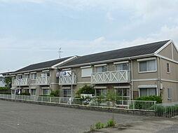 松之浜グリーンハイツ[C201号室]の外観