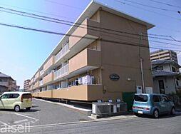 広島県廿日市市大東の賃貸マンションの外観