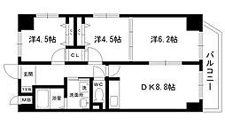 パピオ・ツインタワー[304号室]の間取り