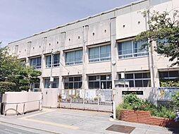 [一戸建] 大阪府堺市西区浜寺昭和町4丁 の賃貸【/】の外観