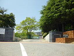 亀崎中学校 徒歩 約10分(約726m)
