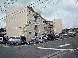 小堀マンション[33-2号室]の外観