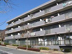 神奈川県横浜市青葉区奈良5丁目の賃貸マンションの外観