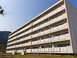 兵庫県丹波市氷上町石生の賃貸マンションの外観