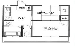 東京都足立区伊興3丁目の賃貸マンションの間取り