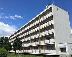 ビレッジハウス松園1号棟[1階]の外観