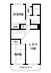 東京都中野区弥生町の賃貸マンションの間取り