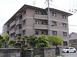 コスモアベニュー[4階]の外観