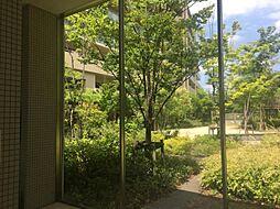 季節によって変わるマンション敷地内の景色も魅力