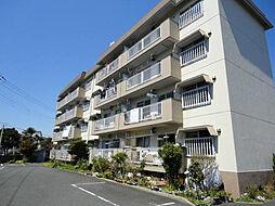 杉ヶ岡コーポ[3階]の外観