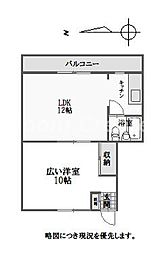 徳島県徳島市蔵本町2丁目の賃貸アパートの間取り