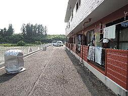 サンライフ加倉井[203号室]の外観