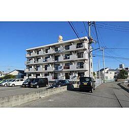 徳島県徳島市助任本町5丁目の賃貸マンションの外観