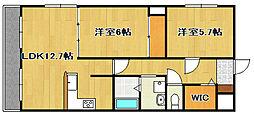 静岡県浜松市東区神立町の賃貸マンションの間取り