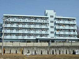 愛知カレッジタウンA棟[1113号室]の外観