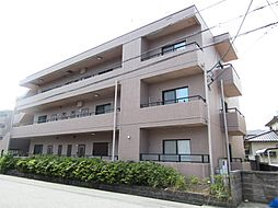 愛知県半田市青山4丁目の賃貸マンションの外観