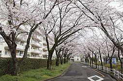 杉戸高野台駅 2.7万円