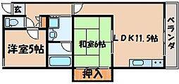 広島県広島市東区曙5丁目の賃貸マンションの間取り