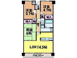 愛媛県松山市土居町の賃貸マンションの間取り