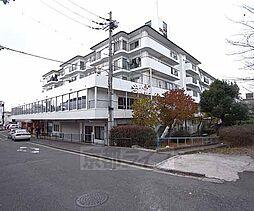 エクセルハイツ新田辺本館[113号室]の外観