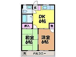愛媛県松山市天山3丁目の賃貸マンションの間取り