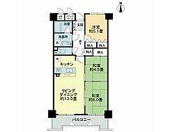 徳島県徳島市南佐古六番町の賃貸マンションの間取り