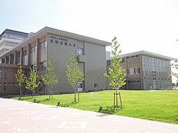 大学京都看護大学まで499m