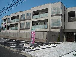 鳥取県鳥取市南安長3丁目の賃貸マンションの外観