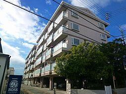 ネオシティ道明寺[206号室号室]の外観