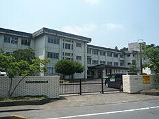 水戸市立上中妻小学校 徒歩 約8分(約620m)