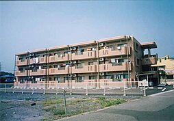 栃木県宇都宮市西川田1丁目の賃貸マンションの外観