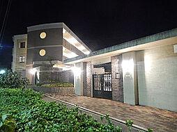 ピュアグリーン壱番館[303号室]の外観