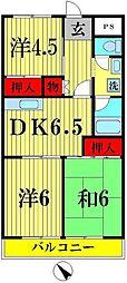 千葉県松戸市南花島の賃貸マンションの間取り