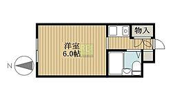 東京都新宿区四谷坂町の賃貸マンションの間取り