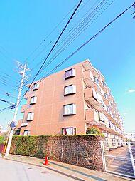 埼玉県新座市馬場4丁目の賃貸マンションの外観