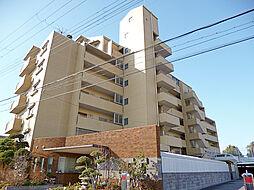 メゾンドプルメリア[2階]の外観