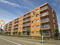 北海道札幌市東区北四十一条東17丁目の賃貸マンションの外観