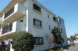 サンハイツ見和 B棟[305号室]の外観