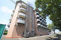 外観(2004年築、5階建。オシャレなペット可マンション(猫限定)。)