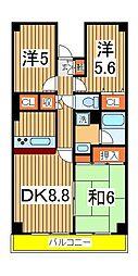 サポーレ天王台[302号室]の間取り