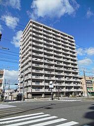 パールハイツ堺[4階]の外観