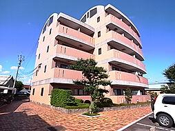 シェラトンAKATSUKA II[3階]の外観