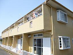[テラスハウス] 東京都葛飾区東水元4丁目 の賃貸【東京都 / 葛飾区】の外観